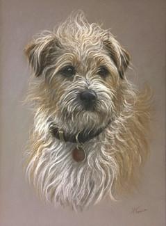 'Bertie'