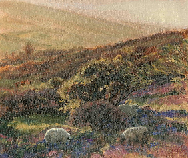 Early Morning Light, Dartmoor