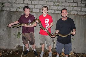 Burmese Python 蟒蛇 j.jpg