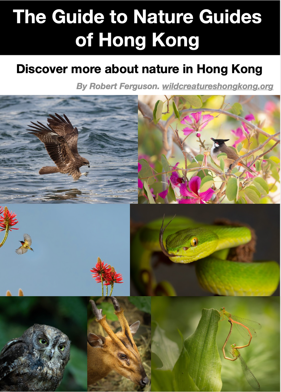 The Guide to Nature Guides of Hong Kong