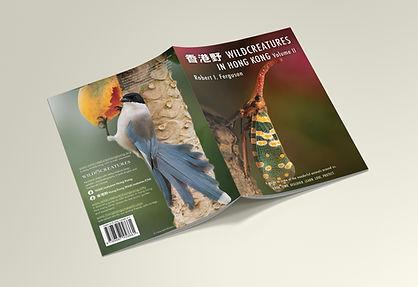 Mockup_A4_Brochure_5.jpg