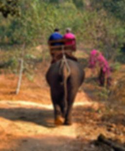 irresponsible tourism elephant trekking