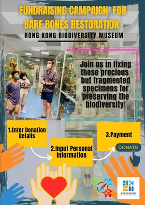 CAN YOU HELP THE BIODIVERSITY MUSEUM?