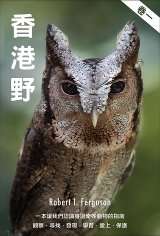 wildcreature booklet