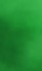 Green Woven
