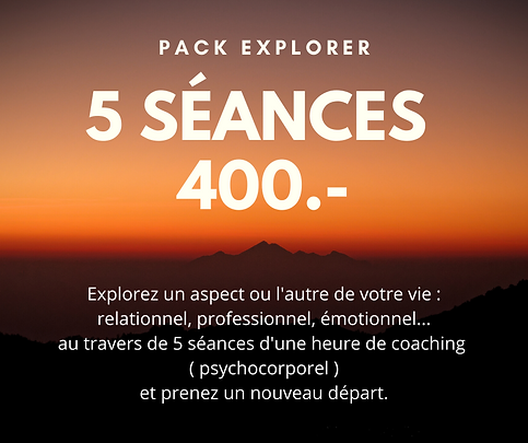 Pack explorer (1).png