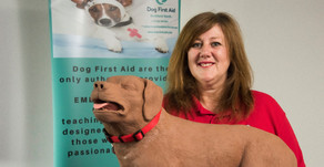 Guest Interviews - Catherine Phillips - Dog First Aid