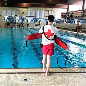 website lifeguard.png