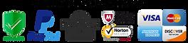 pngfind.com-norton-secured-logo-png-6844