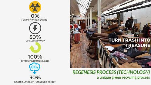 regenesis process