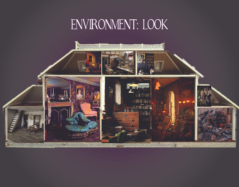 Environment Look
