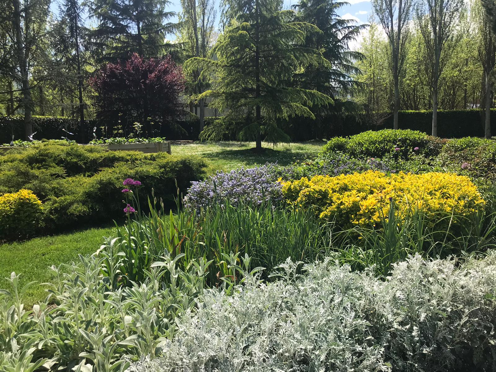 jardí olot