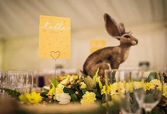 Húsvéti esküvő-Zsófi és Ricsi/2017.04.16