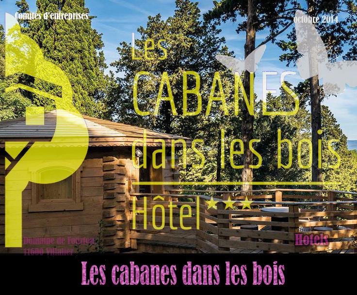 2014 cabanes bois