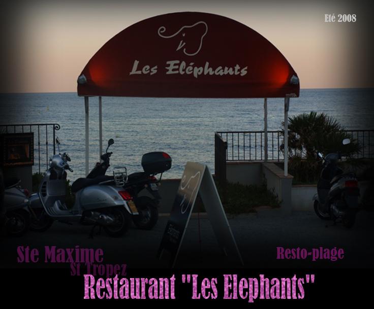 2008 lesElephants
