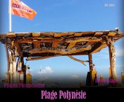 2014_polynésie