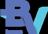 banco-bv-logo.png