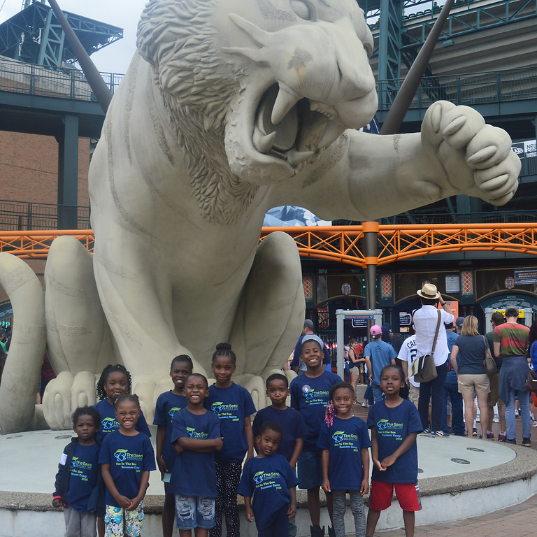 Detroit Tigers Game