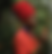 Screen Shot 2020-06-01 at 8.12.19 PM.png
