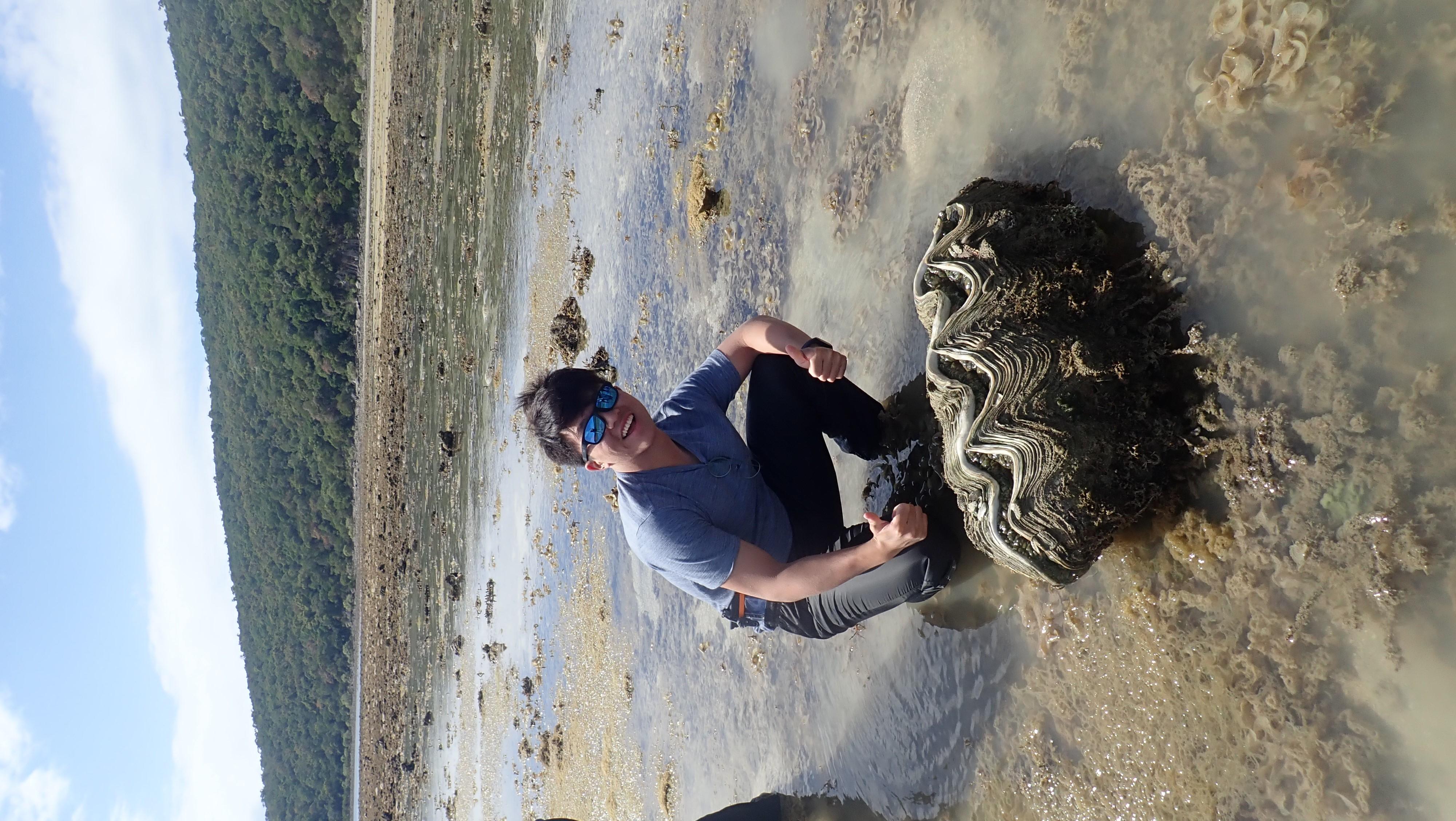 Giant_clam