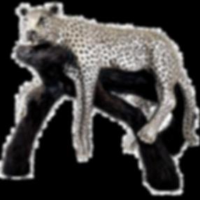 Silver-Calm-Leopard-Branch-Statue-8031.p