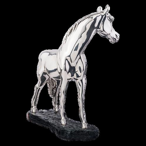 Arabian Silver Horse Statue - Curious