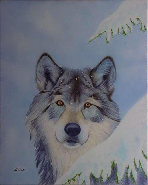 Loup aux aguets