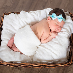DeLaMare Newborn