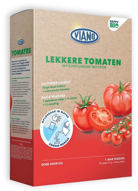Happy BIO Tomaten