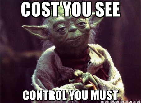 Project Controls Firm: Cost You See Control You Must
