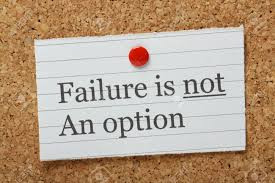 Project Consulting: Failure Should Not Be An Option How to avoid failed software implementations.