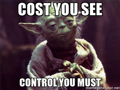 Product and Project Controls Firm: Cost You See Control You Must