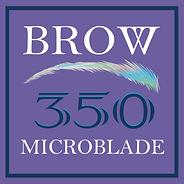 BROW - Purple Box.png