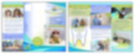 Brochure - Sunshine Children's Dentistry