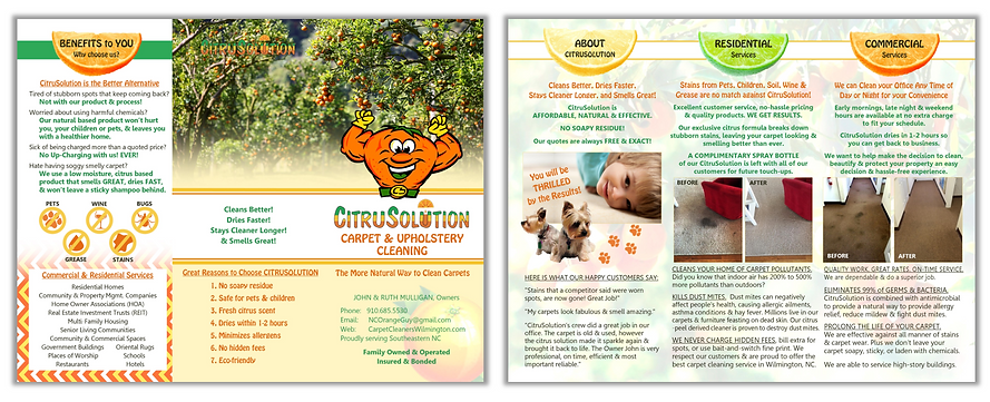 Brochure - CitruSolution.png