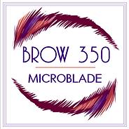 BROW - Circle of Eyebrow.png