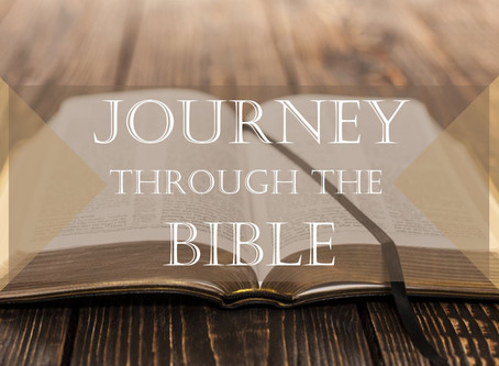 The Bible: The Story of the World and Your Place in It