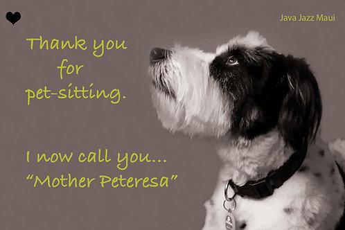 """Oliver Postcard: """"Mother Peteresa"""""""