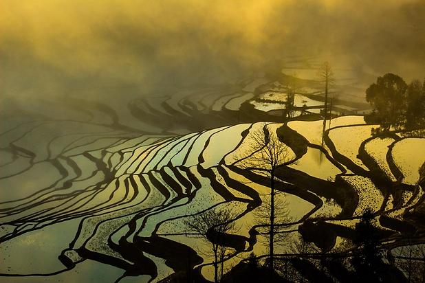 Yuanyang Rice Terrace_2.png