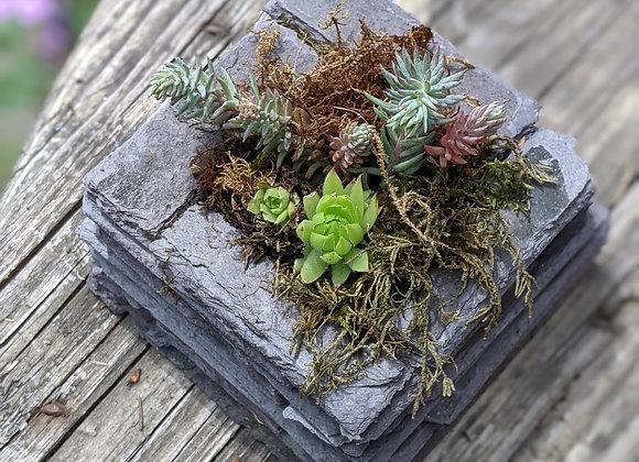 Square reclaimed slate planter - Small