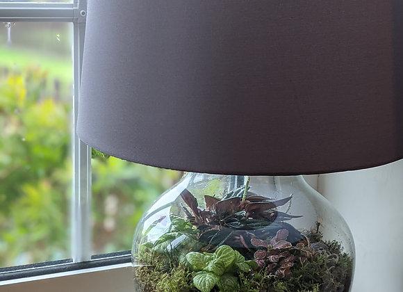 Terrarium Lamp 2