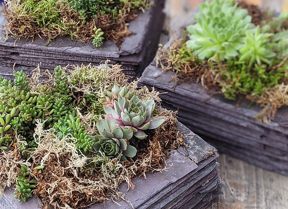 Square reclaimed slate planter - Medium