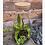 Thumbnail: Terrarium 1