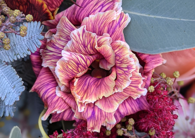 Vibrant-lisianthis-wedding-flowers-derbyshire.jpg