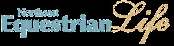 NEEL logo w web (002).png