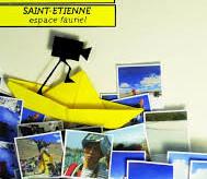 Prix Fast&Curious au Festival Curieux Voyageurs de St Etienne!!!