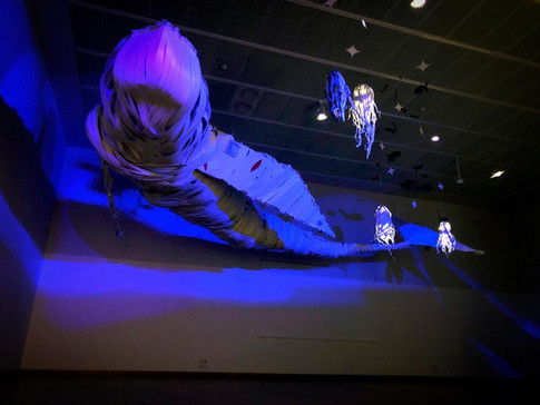 aquarium museum de nancy