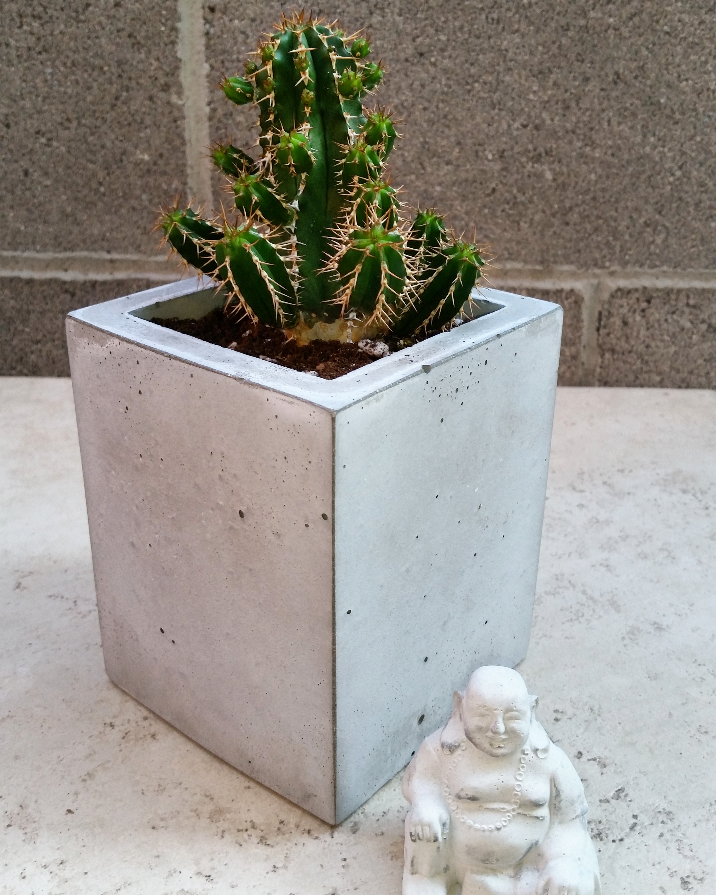 Concrete Planter and Buddha