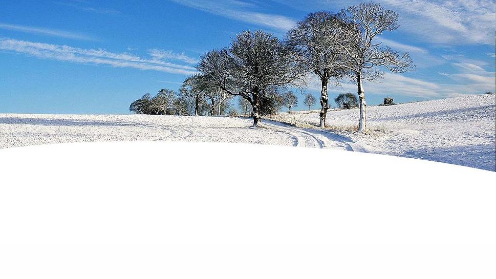 фон для снегоходов
