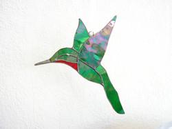 Dee's Hummingbird
